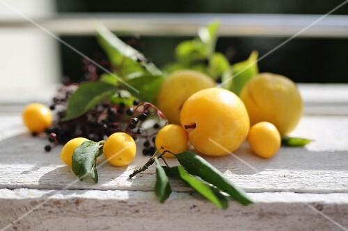 Gelbe Pflaumen und Holunderbeeren auf sonniger Holzbank
