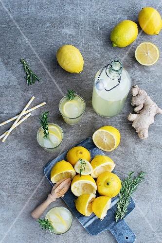 Selbstgemachte Zitronen-Ingwer-Limonade mit Rosmarin