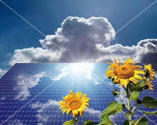 Green energy,conceptual image