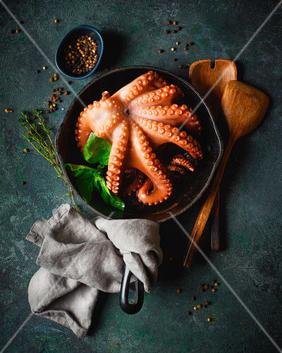 Octopus in a pan