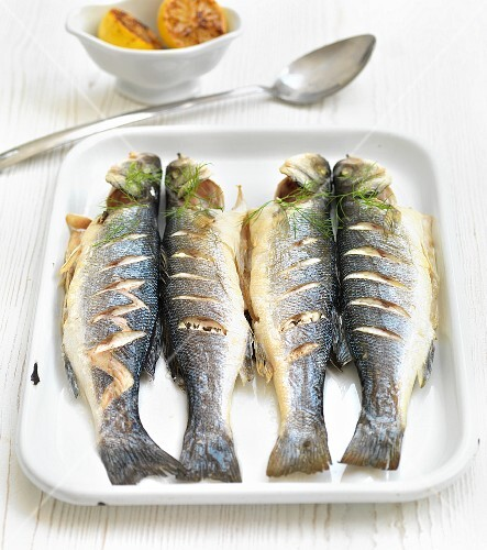 Seabass with dill