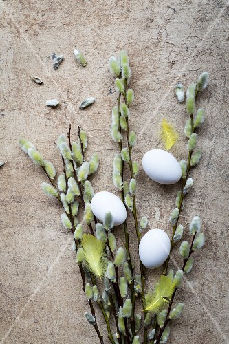 An arrangement of eggs, willow, and yellow feathers for Easter