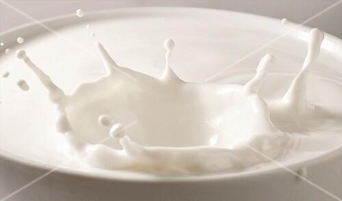 Milch mit Splash