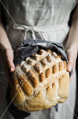 Freshly baked white loaf