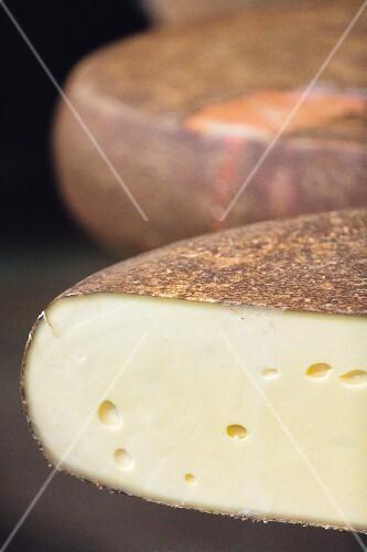 Wheels of mountain cheese from the Allgäu region