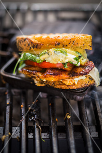 A grilled chicken, tomato, rocket and cheese sandwich