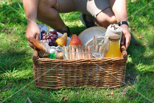 A young male holding a picnic basket of drinks, fruit and sandwiches