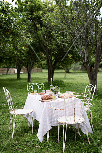 Alfresco lunch on rustic iron chairs in an orchard