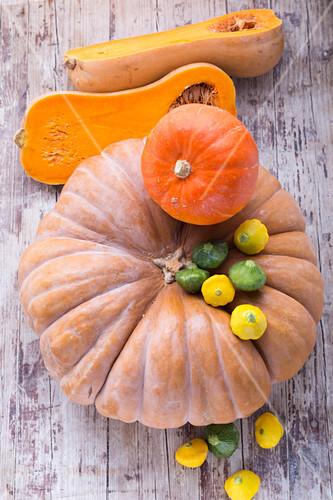 Hokkaido pumpkin, Muscade de Provence, butternut squash and patty pan squash