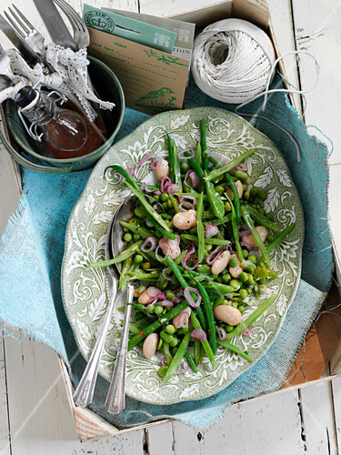 Mixed bean salad with red onions