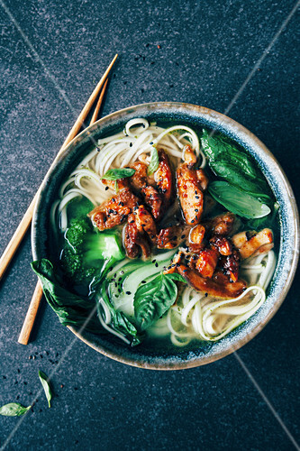 Noodle soup with spicy marinated chicken, basil, broccoli and bok choy (Asia)