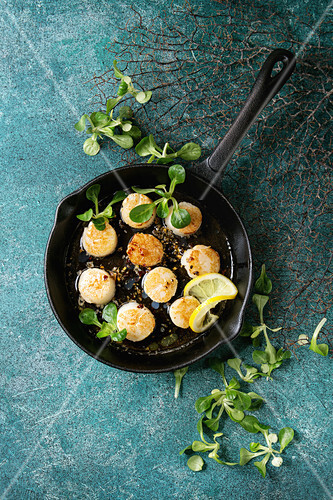 Fried scallops with butter lemon spicy sauce in cast-iron pan served with green salad over turquoise texture background