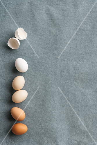 Eggs and egg shells on a grey surface