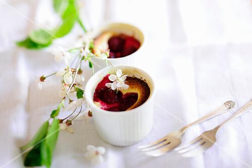 Chocolate and wild cherry cakes