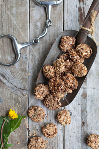 Horse biscuits with oatmeal, carrots and apples (horse treats)