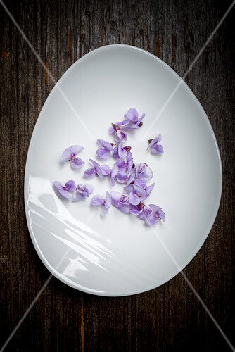 Bean Blossom on a White Plate