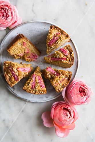 Rhubarb cake sponge on a plate