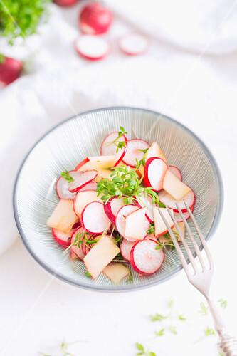 Radish salad with apple, cress and lemon vinaigrette