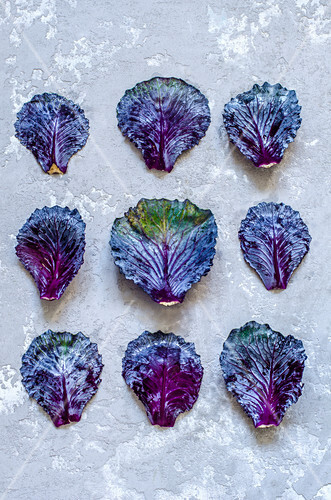 Leaves of violet cabbage on a concrete background