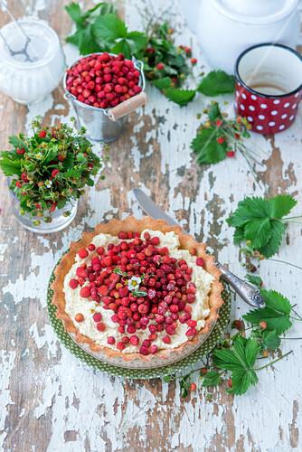 Wild strawberry pie