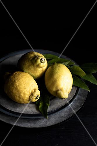 Three lemons on a plate