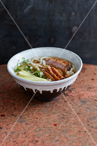 Dashi udon noodle soup with duck breast
