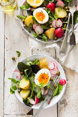 Vegetarian Boiled egg Easter spring salad