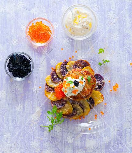 Pollack meatballs on a purple potato gratin with sour cream and trout caviar