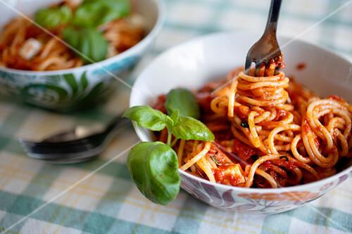Spaghetti Pasta with tomatoe sauce and mozzarella basil
