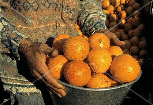 Person Holding Bowl of Oranges in Turkey