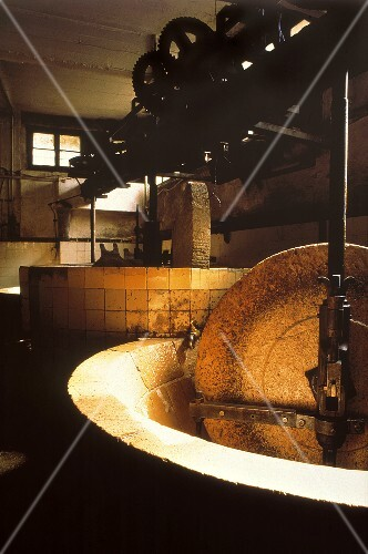 Olive oil production: interior view of factory