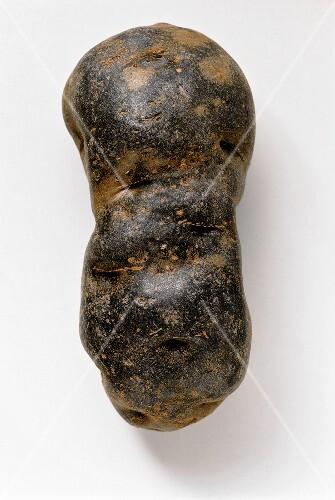 Truffle potato