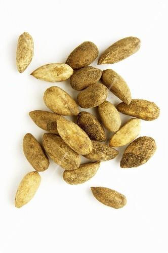 Neem fruits (Azadirachta indica), natural remedy