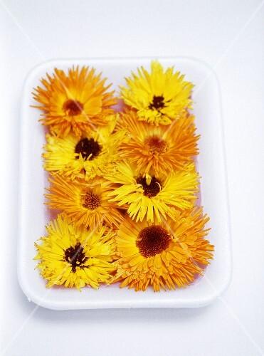 Bowl of marigolds
