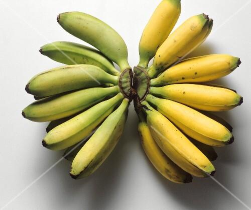 Ripe and unripe mini-bananas