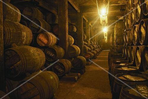 Wine cellar, Bodegas Lopez de Heredia, Rioja Alta, Spain