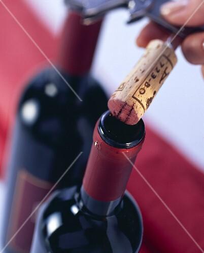 Uncorking red wine bottle
