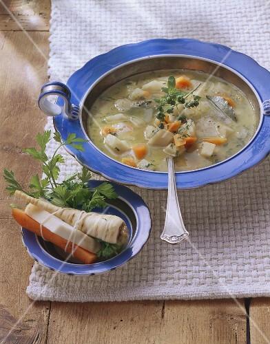 Berlin vegetable stew with marjoram; soup vegetables