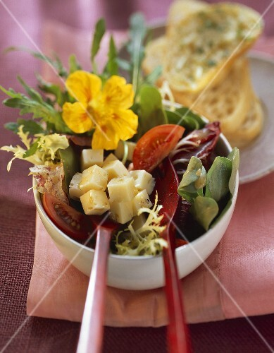 Summer salad with cheese