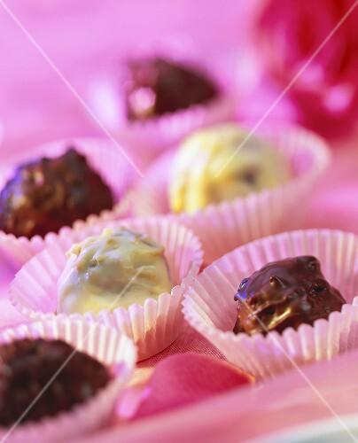 Konfekt mit weisser und dunkler Schokolade in Papierförmchen