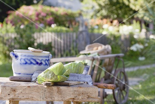 Rustic still life with cabbage in cottage garden