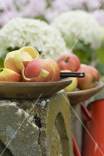 Fresh apples, one partly peeled, on a fence