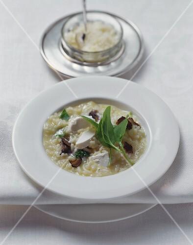 Risotto tartufato al caprino (Truffle risotto with soft cheese)