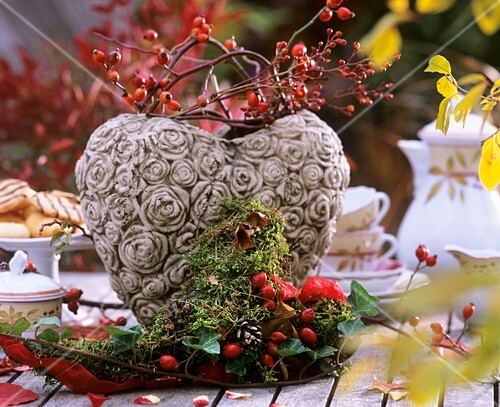 Mossy heart: rose hips (Rosa) and ivy (Hedera)