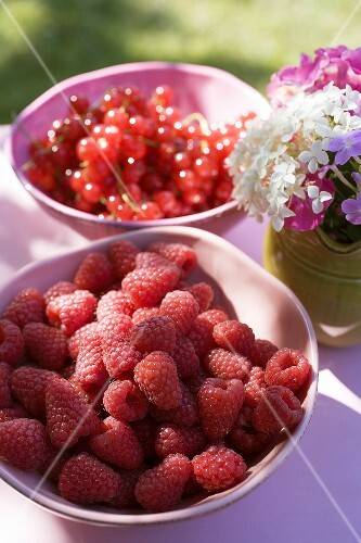 Raspberries and redcurrants on a table in the open air