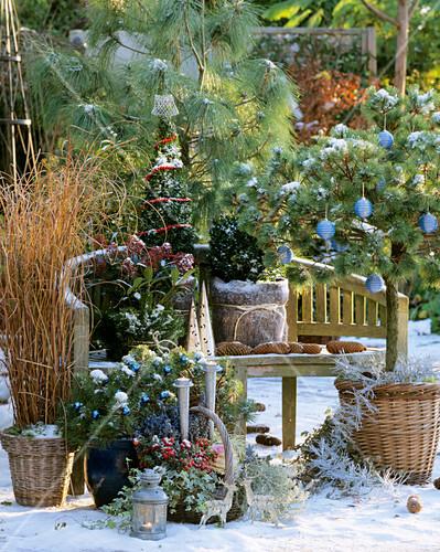 weihnachtlich dekorierte bank im freien bild kaufen 271090 stockfood. Black Bedroom Furniture Sets. Home Design Ideas