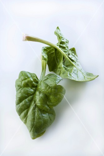 Two spinach leaves