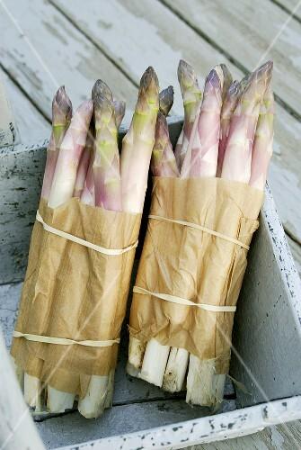 Two bundles of purple asparagus