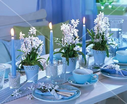 festlich gedeckter tisch mit schneeglanz dekoriert bild. Black Bedroom Furniture Sets. Home Design Ideas