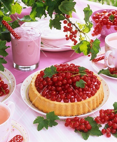 Summery redcurrant flan and fruit quark
